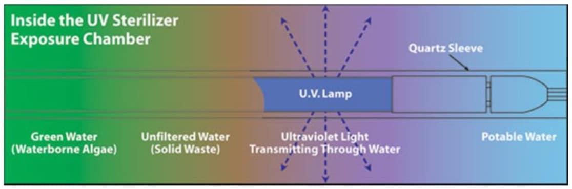 UV transmittance